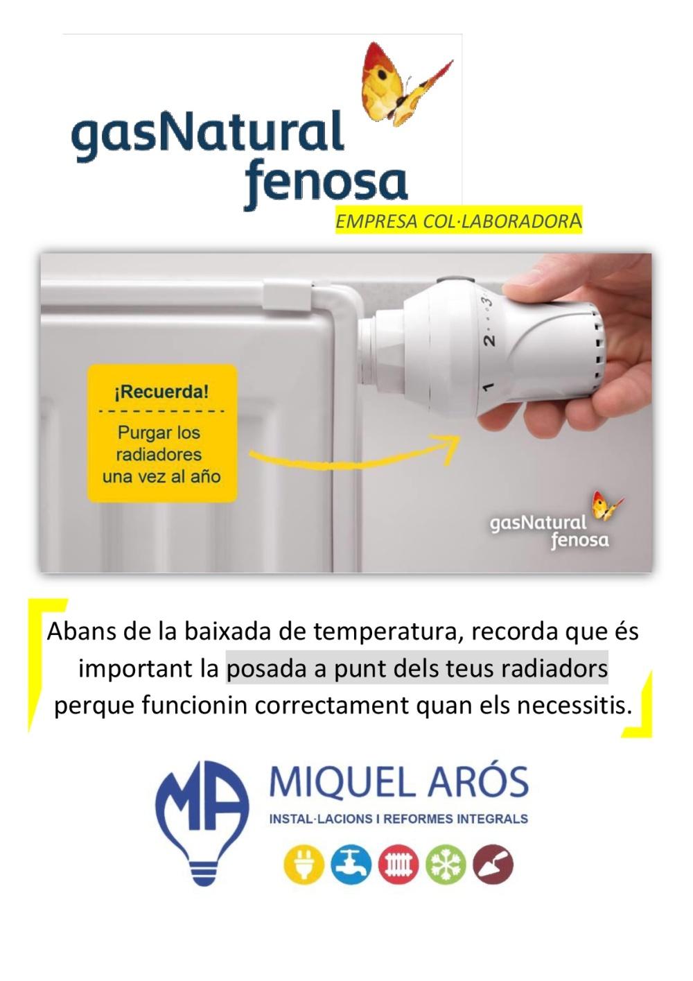 purgar radiadores-001.jpg