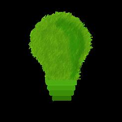 green-1966408_960_720